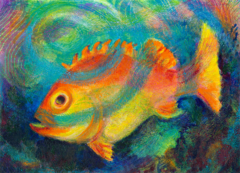 colorful fish heni 39 s happy paintings