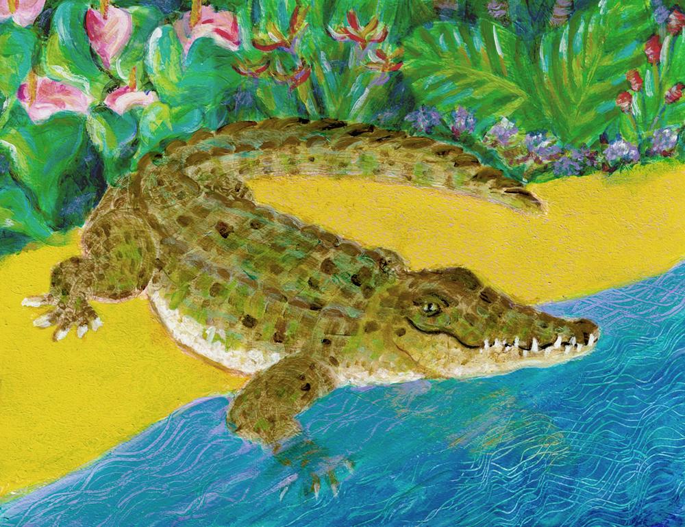 Kết quả hình ảnh cho feed crocodile painting