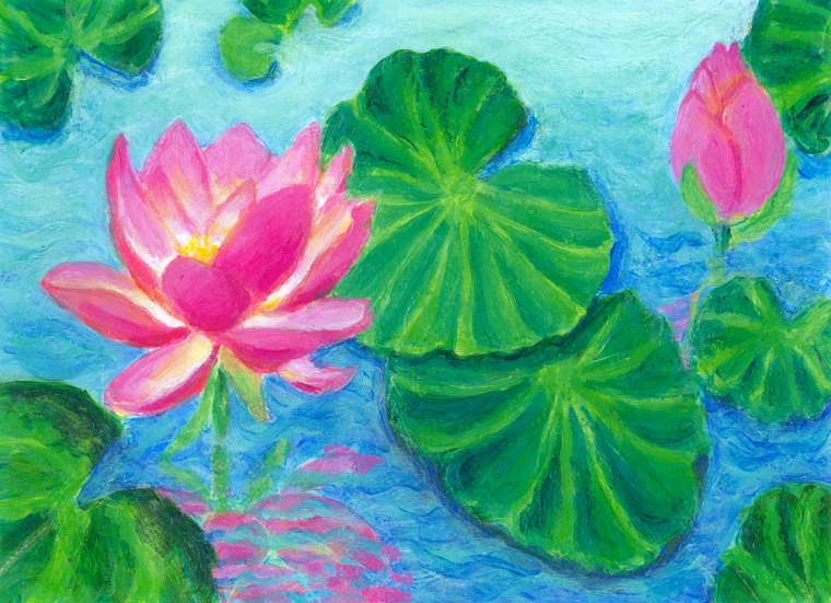 Water Lilies with Pink Lotus - arcylic painting by Heni sandoval