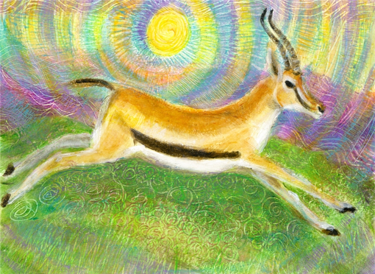 Gazelle Runnning