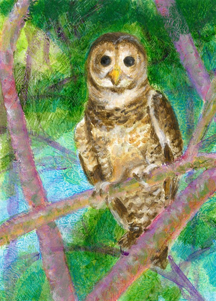 OWL 1000
